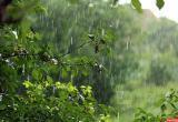 Синоптики предупреждают о ливнях, грозах и сильном ветре