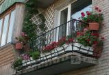В Правобережном районе Братска выберут лучший двор, лучшую усадьбу и лучший цветник