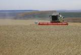 Сельхозтоваропроизводители Приангарья получат субсидии на 220 млн рублей