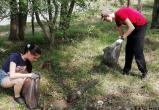 Школьники Братска за лето убрали 120 гектаров зеленых зон