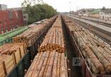 В Братске предприятие не заплатило 12 миллионов  пошлин за экспорт леса