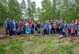 Братские волонтеры стали финалистами областного фестиваля добровольцев