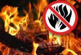 В дни новогодних и рождественских праздников в Иркутской области будет введен особый противопожарный режим
